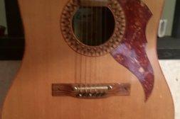 Legendarisk gitarr från Holland