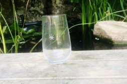 Champagneglas Kosta Boda